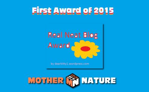 real-neat-blog-award-first-award-of-20151
